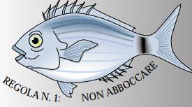 Pubblicità ingannevole pesce