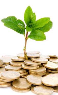 Metafore soldi ecologia acquisti verdi