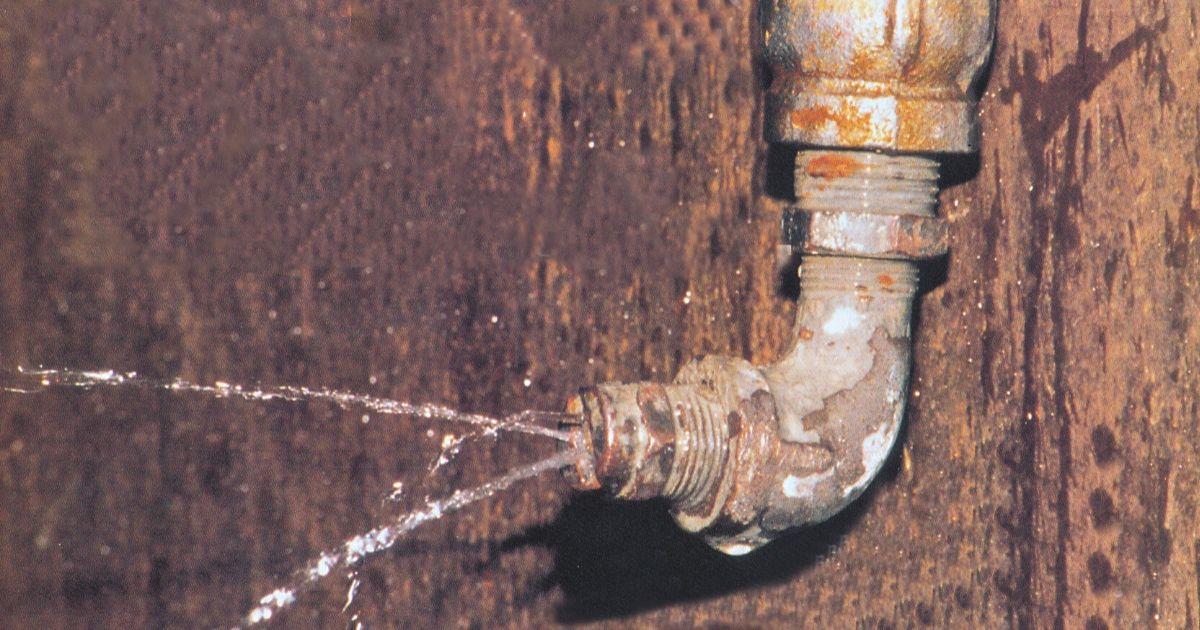 vernici all'acqua per legno