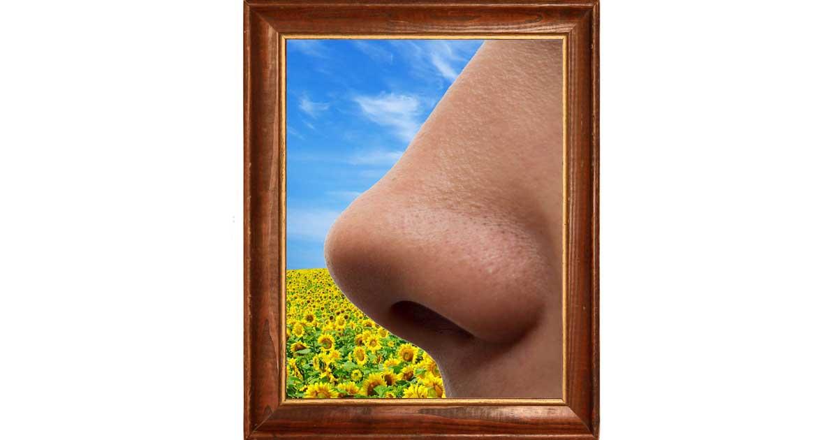 Odore e molestie
